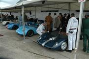 Goodwood Revival Meeting 2016 - foto 33 van 336