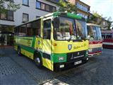 International Oldtimer Bus & Coach Rally Diepenbeek - foto 1 van 139